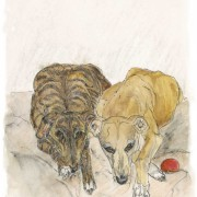 Diary_of_a_dog5