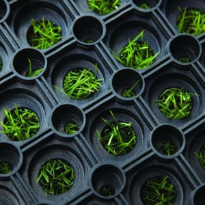 M522 Honeycomb Mat on grass