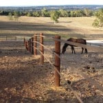 Australia - Stockguard