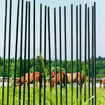 glass fibre fence stakes